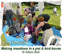Making meadows in a pot and bird boxes