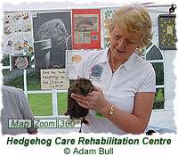 Hedgehog Care Rehabilitation Centre