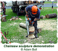 Chainsaw sculpture demonstration
